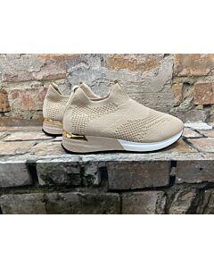 Footwear  Sneaker C2015